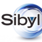 Sibyl Surveys Blog icon